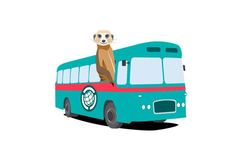 Cómo se puede viajar con un animal en autobús