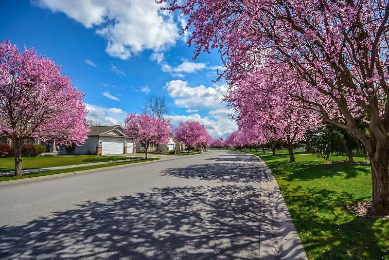 4 tipos de destinos para viajar en autobús en primavera