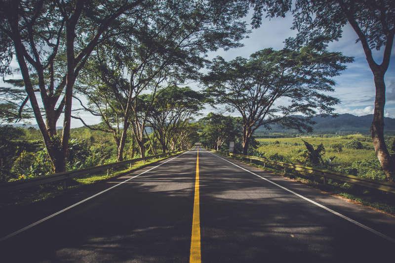 Por qué los autobuses de Grupo Ruiz apoyan la sostenibilidad